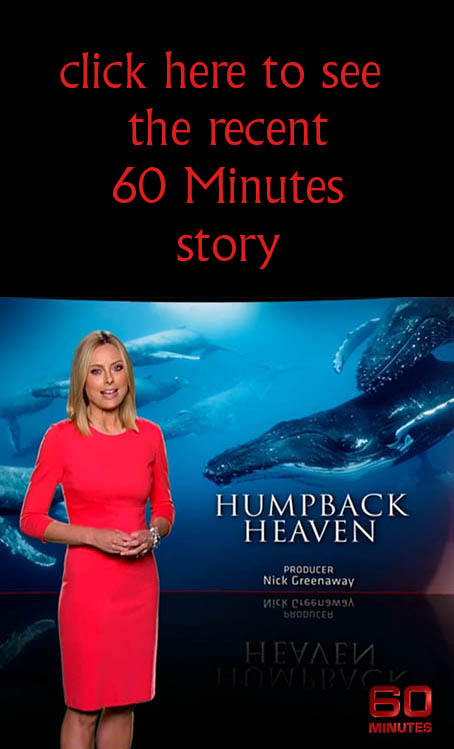 As seen on 60 Minutes