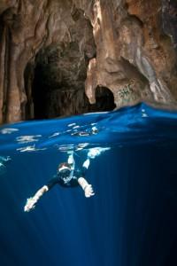 whales-underwater-darrenjew-photography-1