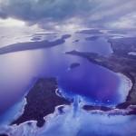 whales-underwater-vavau-darren-jew-01